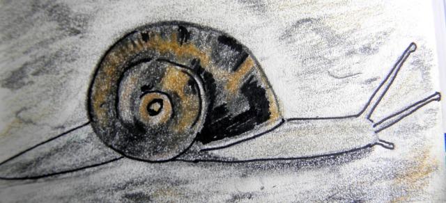 Cargol pintura