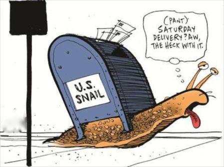 Cargol Americà