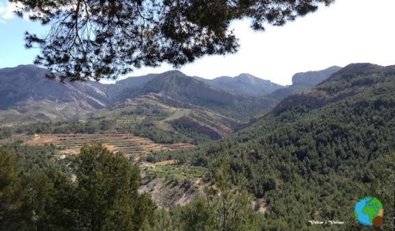 Horta de San Joan 10-imp