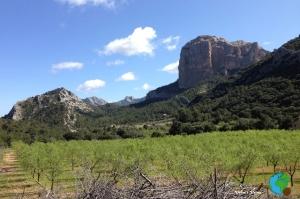 Horta de San Joan 8-imp