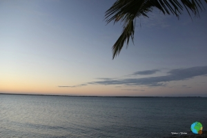 illa de MOGUNDULA 43-imp
