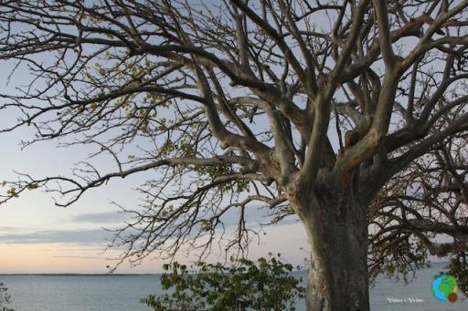 illa de MOGUNDULA 48-imp