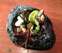 sunomono d'algues fresques i mol·luscos