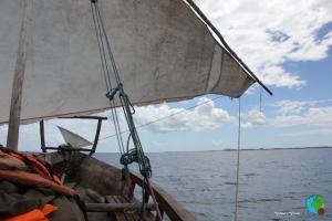 Navegació en Dohw per les QUIRIMBAS 89-imp