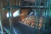 Porto - Casa da Musica 18-imp