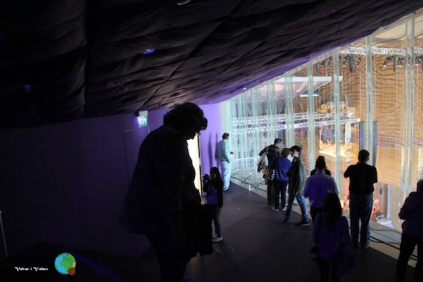 Porto - Casa da Musica 25-imp