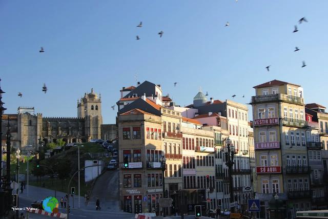 Porto - dia 2 creuer pel DOURO 132-imp
