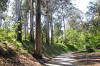 Porto - Jardins Serralves 19-imp