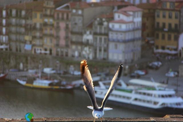 Porto - Posta de sol, día 3 de maig 9 (1)-imp