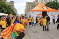 Diada Nacional de Catalunya 2013 - 10-imp