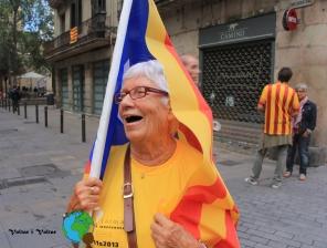 Diada Nacional de Catalunya 2013 - 16-imp