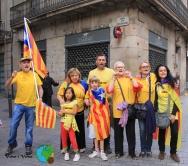 Diada Nacional de Catalunya 2013 - 18-imp