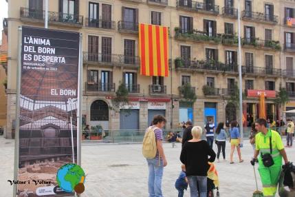Diada Nacional de Catalunya 2013 - 26-imp