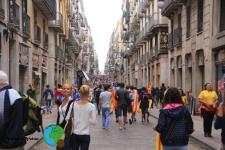Diada Nacional de Catalunya 2013 - 5-imp