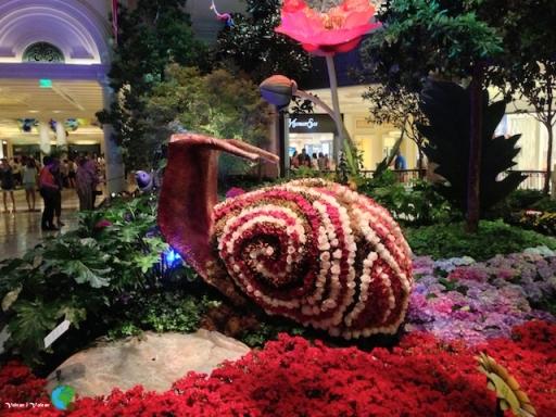 Cargol de Flors - dins d'un hotel de Las Vegas