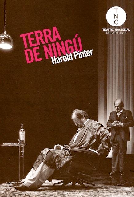 Teatre terra de ningu teatre nacional catalunya for Teatre nacional de catalunya