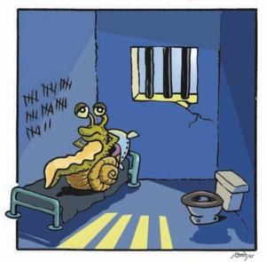 Cargol a la presó