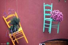 Girona - Temps de Flors 2014 b2-imp
