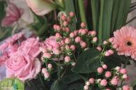 Girona - Temps de Flors 2014 i4-imp