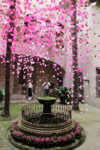 Girona - Temps de Flors 2014 za2-imp