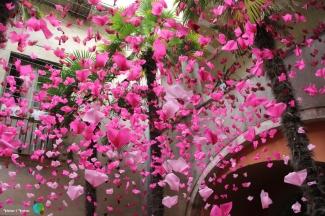 Girona - Temps de Flors 2014 zb1-imp