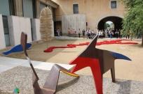 Girona - Temps de Flors 2014 zg1-imp