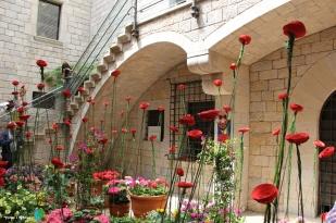 Girona - Temps de Flors 2014 zi1-imp