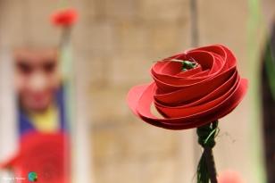 Girona - Temps de Flors 2014 zi2-imp