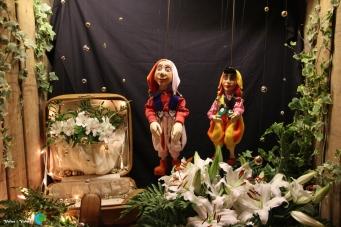 Girona - Temps de Flors 2014 zu1-imp
