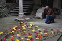 Girona - Temps de Flors 2014 zv2-imp