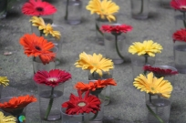 Girona - Temps de Flors 2014 zv3-imp