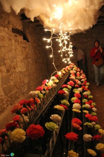 Girona - Temps de Flors 2014 zza1-imp