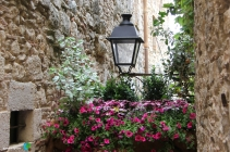 Girona - Temps de Flors 2014 zzg1-imp