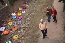 Girona - Temps de Flors 2014 zzk1-imp