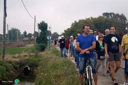Arrancada de l'arros - Poble Nou del Delta - 08 juny 2014 a1-imp