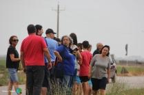 Arrancada de l'arros - Poble Nou del Delta - 08 juny 2014 c1-imp