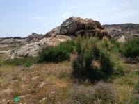 Paratge de Tudela - Cap de Creus k1-imp