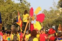 Diada Nacional de Catalunya - Voltar i Voltar - 103-imp