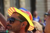Diada Nacional de Catalunya - Voltar i Voltar - 61-imp