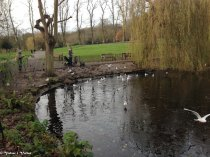 LONDRES - 2014-12-09IMG_0098015