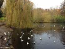 LONDRES - 2014-12-09IMG_0100017