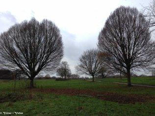 LONDRES - 2014-12-09IMG_0155009