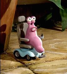 Cargol en cadira de rodes