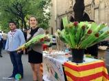 Sant Jordi 2015 10-imp