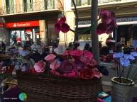 Sant Jordi 2015 18-imp