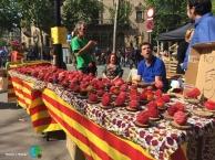 Sant Jordi 2015 24-imp