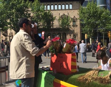 Sant Jordi 2015 25-imp