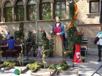 Sant Jordi 2015 31-imp