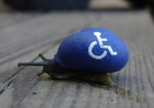 Cargol discapacitat