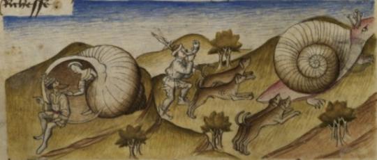 Cargols del segle XVII